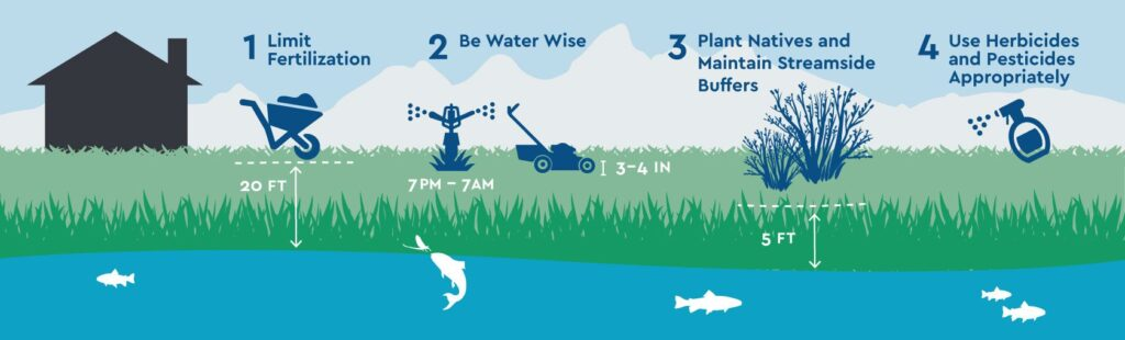4 practices for a trout friendly lawn